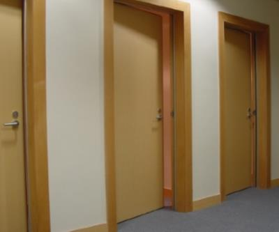 Acoustic Timber Doors
